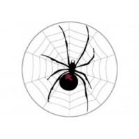 Samolepka na stredy kolies živicová 4ks - SPIDER (C13)